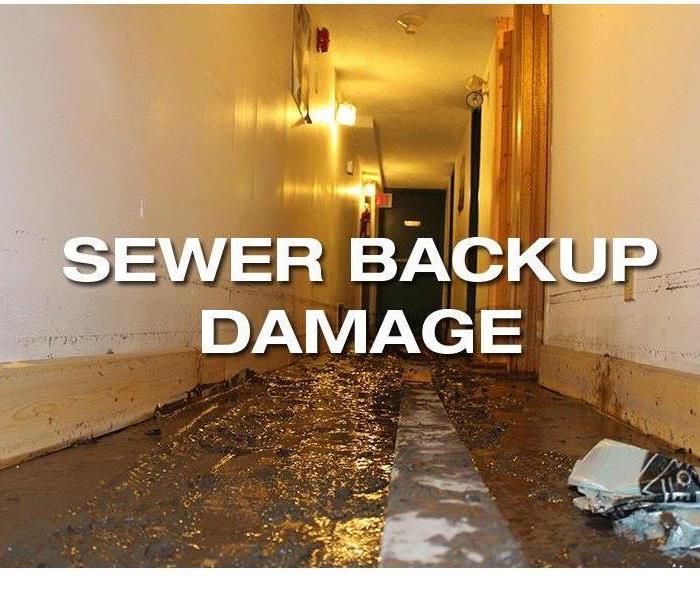 Ocala, FL Biohazard Cleanup - Until Help Arrives