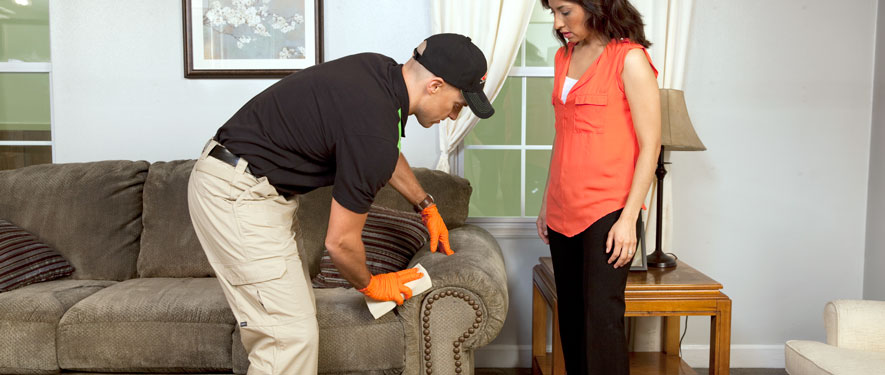 Ocala, FL carpet upholstery cleaning